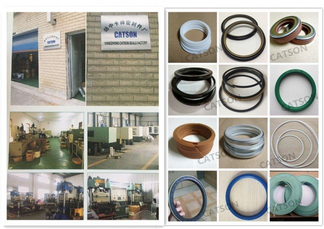 CATSON-HYDRAULIC SEAL PRODUCER